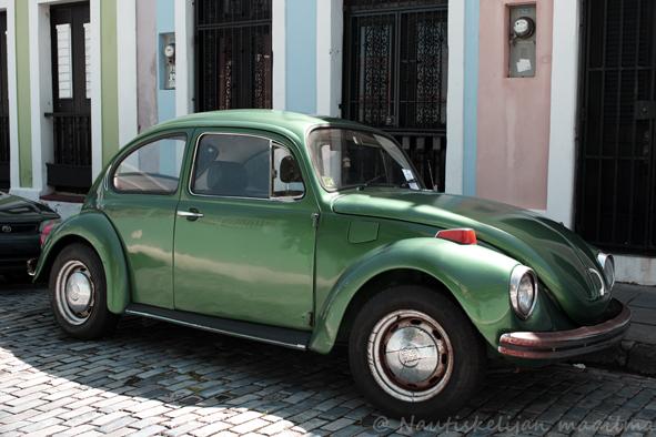 San_Juan_beetle