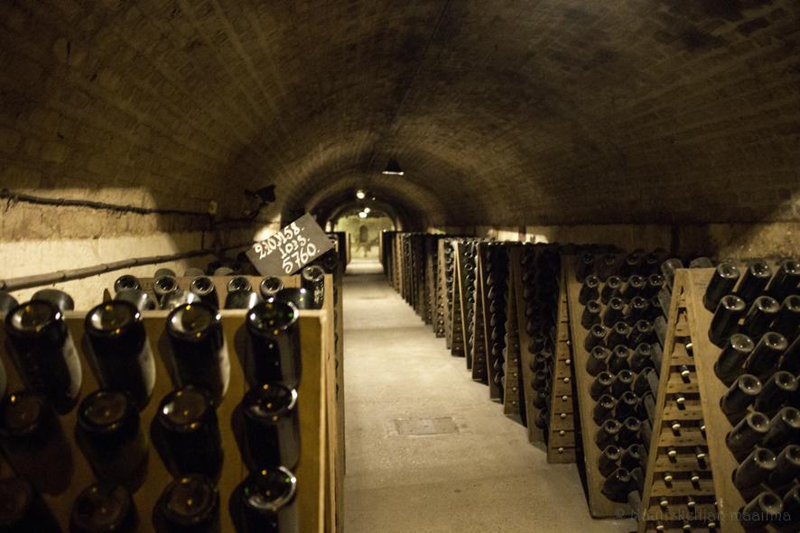 Champagnen alue, samppanjakellarit